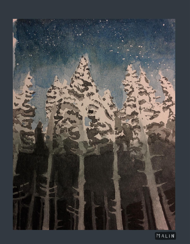 Forêt Finlande